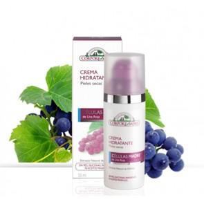 Crema Hidratante Piel Seca - Celulas Madre - Corpore Sano