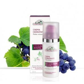 Crema Hidratante Piel Mixta - Celulas Madre - Corpore Sano
