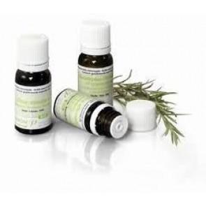 Pranarom Salvia Real Hojas Grandes Aceite Esencial Bio