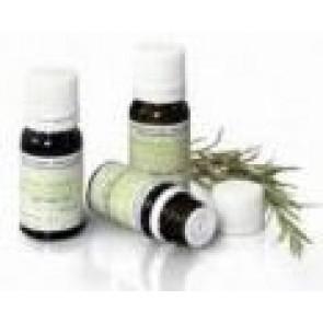Pranarom Hierba Lombriguera Tanacetum Aceite Esencial