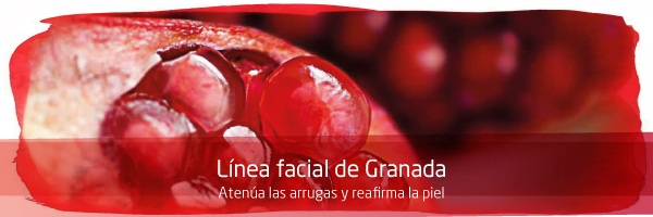 Tienda de Weleda Granada Reafirmante a partir de los 40 años - Cosmética Ecológica 100% Certificada